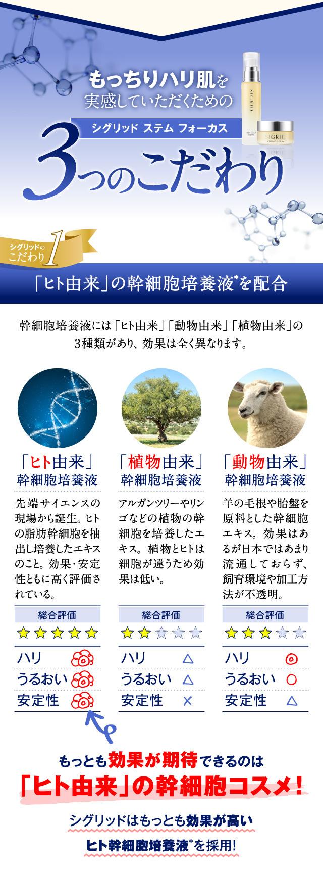 main_14.jpg