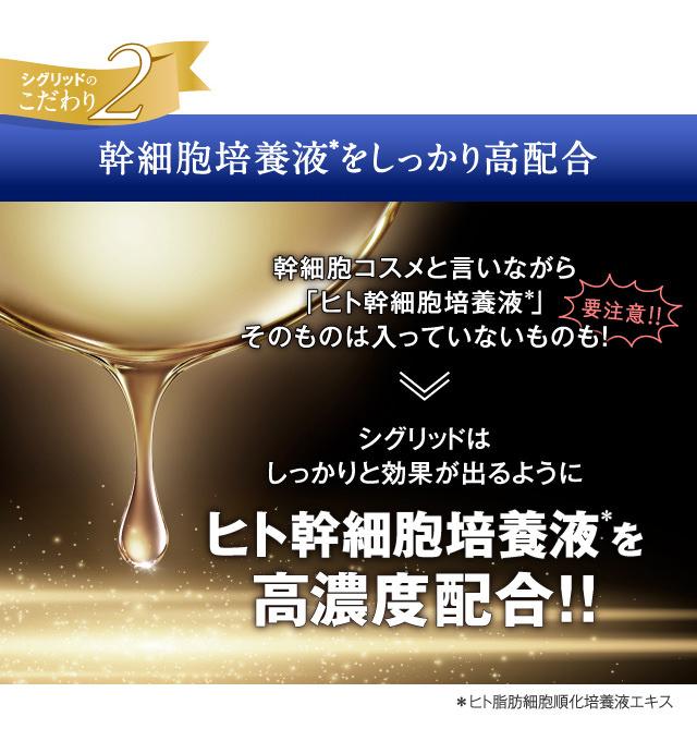 main_15.jpg